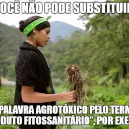 Democracia cognitiva e mudança do sistema alimentar brasileiro